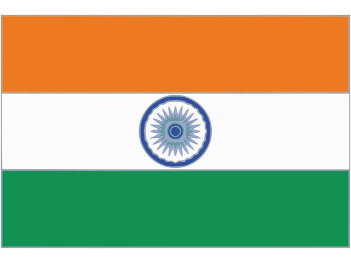 佳速海外合作-印度